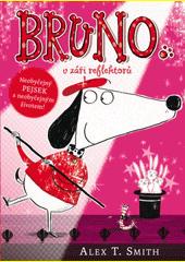 Bruno v záři reflektorů (odkaz v elektronickém katalogu)