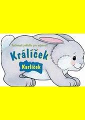 Králíček Karlíček : veršovaná pohádka pro nejmenší  (odkaz v elektronickém katalogu)