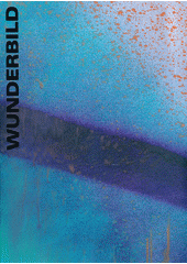 Katharina Grosse : Wunderbild  (odkaz v elektronickém katalogu)