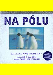 Na pólu  (odkaz v elektronickém katalogu)