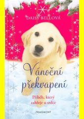 Vánoční překvapení : příběh, který zahřeje u srdce  (odkaz v elektronickém katalogu)
