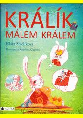 ISBN: 9788025328866