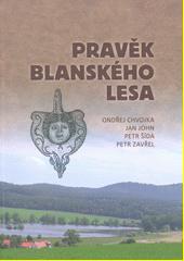 Pravěk Blanského lesa  (odkaz v elektronickém katalogu)