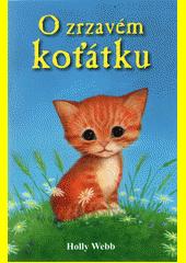 O zrzavém koťátku  (odkaz v elektronickém katalogu)