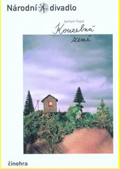 Jáchym Topol, Kouzelná země (odkaz v elektronickém katalogu)