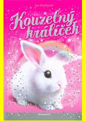 Kouzelný králíček. Strážce klíče  (odkaz v elektronickém katalogu)