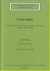 Česká bojiště : válečné události v údolí Úhlavy a v území zemské brány Všeruby - Furth im Wald  (odkaz v elektronickém katalogu)