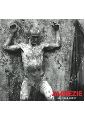 Amnézie  (odkaz v elektronickém katalogu)