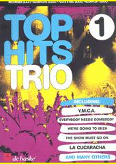Top hits trio : recorder (SAA). 1 (odkaz v elektronickém katalogu)