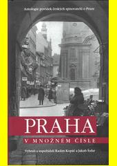 Praha v množném čísle : antologie povídek českých spisovatelů o Praze  (odkaz v elektronickém katalogu)