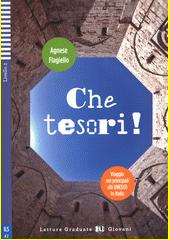 Che tesori! : viaggio nei principali siti UNESCO in Italia  (odkaz v elektronickém katalogu)