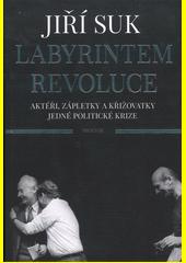 Labyrintem revoluce : aktéři, zápletky a křižovatky jedné politické krize  (odkaz v elektronickém katalogu)