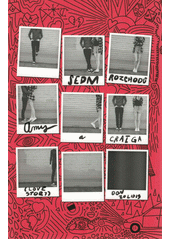 Sedm rozchodů Amy a Craiga : (love story)  (odkaz v elektronickém katalogu)