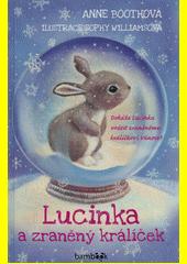 Lucinka a zraněný králíček : dokáže Lucinka vrátit zraněnému králíčkovi Vánoce?  (odkaz v elektronickém katalogu)