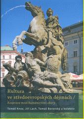 Kultura ve středoevropských dějinách : rozprava mezi humanitními obory  (odkaz v elektronickém katalogu)
