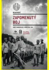 Zapomenutý boj : srbští dobrovolníci v Rusku 1914-1918  (odkaz v elektronickém katalogu)