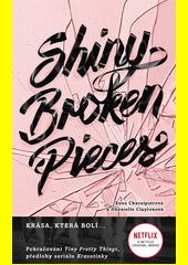 Shiny broken pieces  (odkaz v elektronickém katalogu)