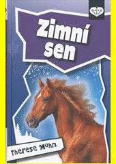 Zimní sen  (odkaz v elektronickém katalogu)